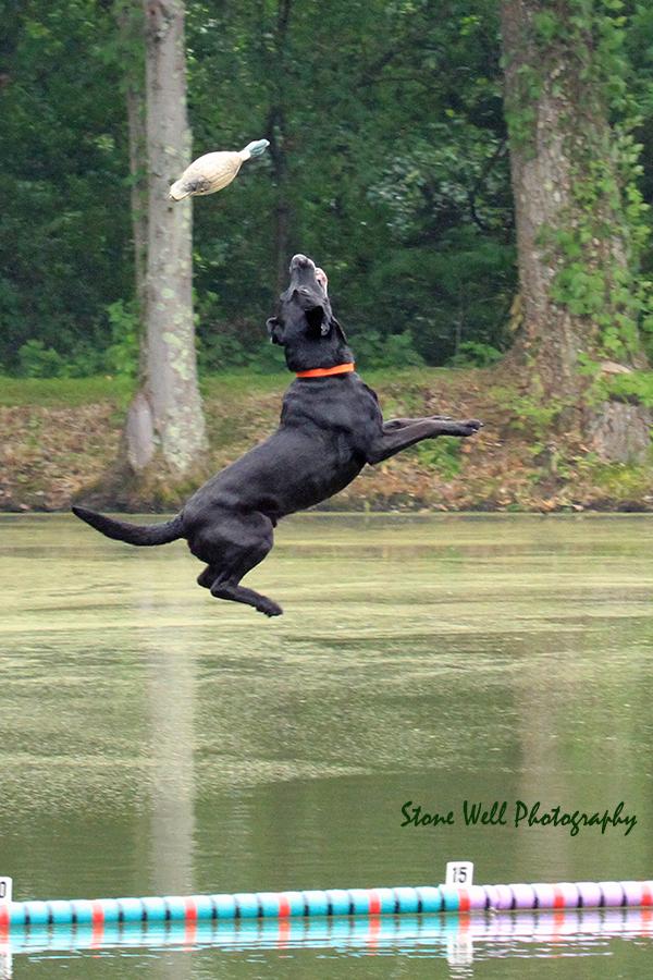 Flyin' Jett